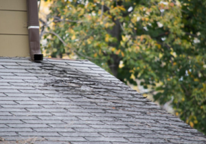 roof repairs and roof replacements